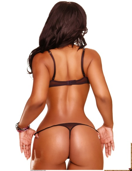 assvixens577-ms-dynasty1