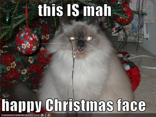 funny-pictures-my-happy-christmas-face