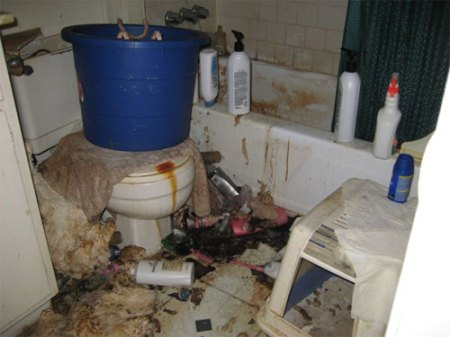 houston_mess_apartment_slob_disgusting_10