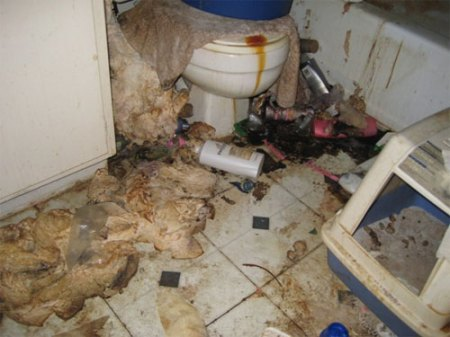 houston_mess_apartment_slob_disgusting_11