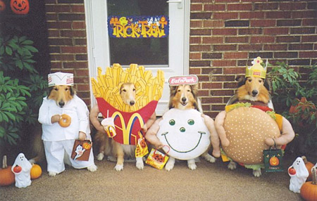 makkifast_food_dogs_halloween_costumes