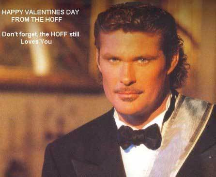 happy-valentines-day-hoff_500x500